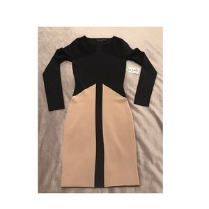NWT Black and Tan Sweater Dress with mesh panels